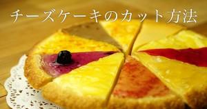 チーズケーキのカット方法