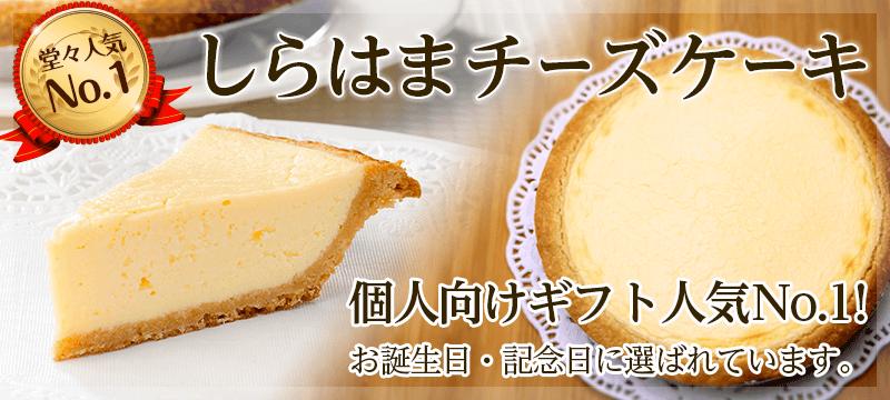 しらはまチーズケーキ 個人向けギフト人気No.1!お誕生日に記念日に選ばれています。