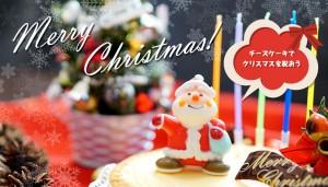 チーズケーキでクリスマスを祝おう